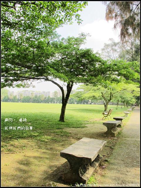 桃園【大溪-東尼咖啡館】湖光美景,悠閒下午茶。