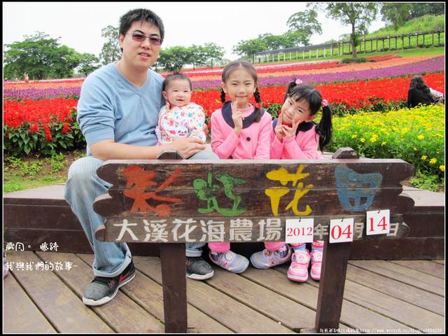 【大溪花海農場】適合散步、賞花、休閒的地方~